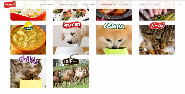 Alimento para mascotas Pronaca