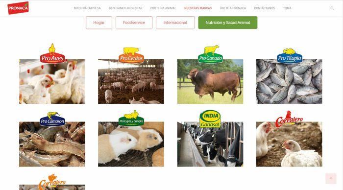 nutrición y salud animal pronaca